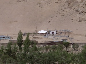 The Ladakhi Animal Shelter