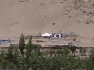 The Ladakhi Animal Shelter